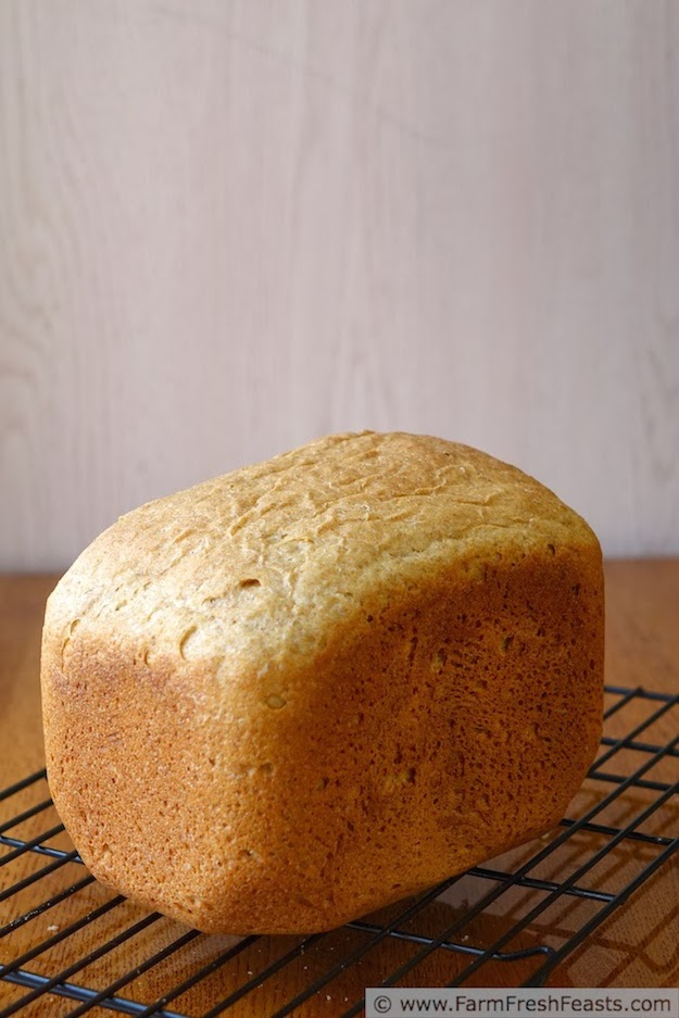 10 recetas de pan-el tarro de ideas-3