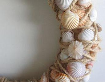 corona de conchas