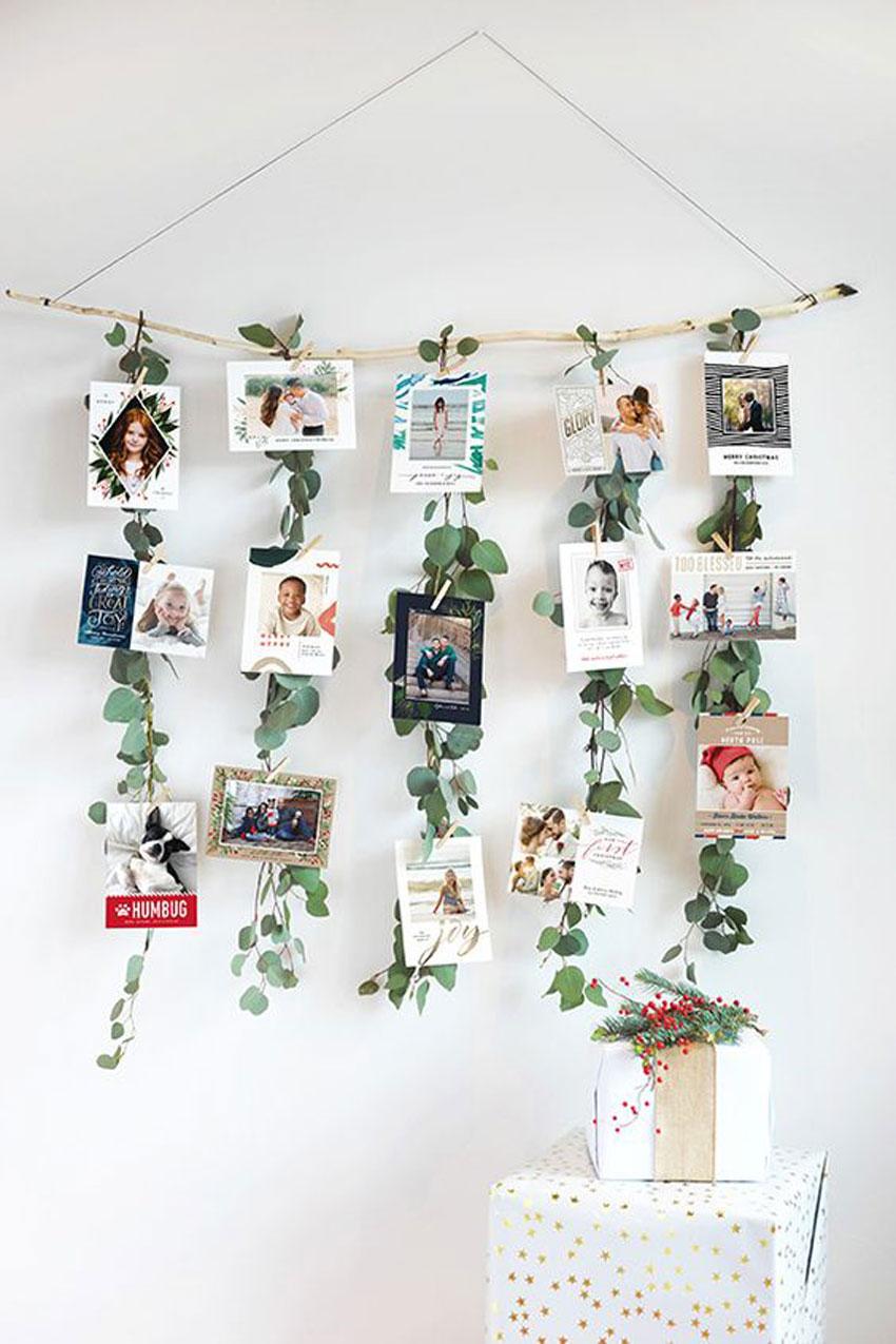 eucalipto, decoracion, cocina, aromaterapia, jarrón , camino de mesa, fiesta, eventos, habitación, cabecero, dormitorio, hogar, bastidor, ramo , colgador, fotografias