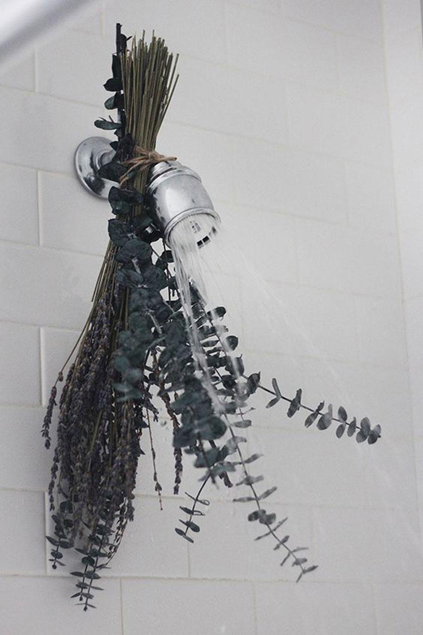 eucalipto, decoracion, cocina, aromaterapia, jarrón , camino de mesa, fiesta, eventos, habitación, cabecero, dormitorio, hogar, bastidor, ramo , colgador, fotografias, espejo, baño, ducha, olor, aroma